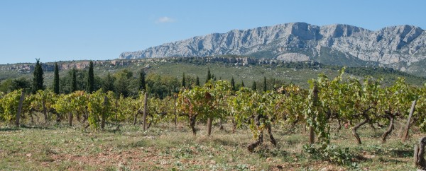 Vignoble Sainte Victoire Provence