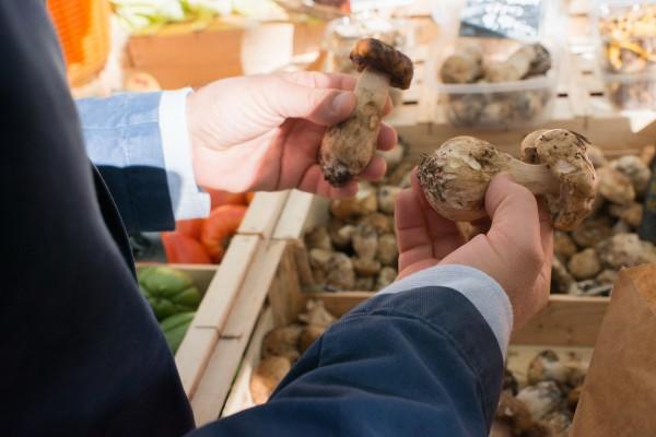 Champignons marché Aix en Provence