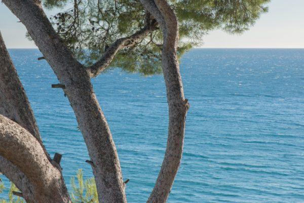 côtes de provencerosé