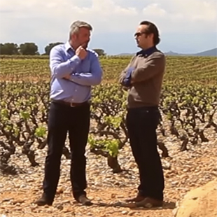 appellation côtes du roussillon villages (english sub)