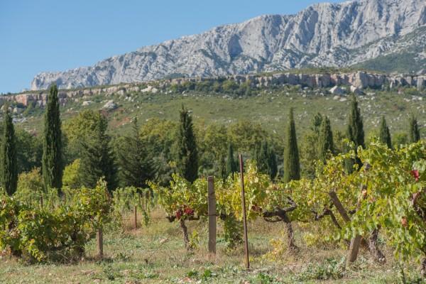 Vignoble de Provence Ste Victoire